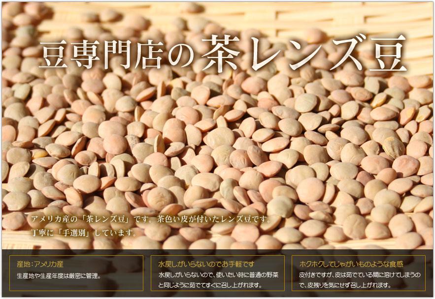 豆専門店の茶レンズ豆