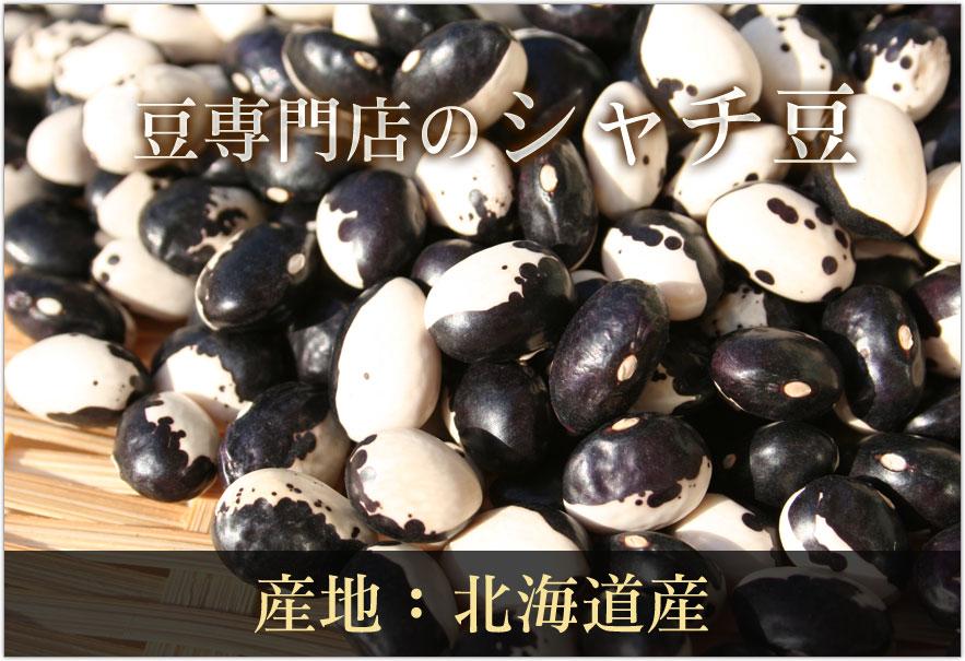 豆専門店のシャチ豆