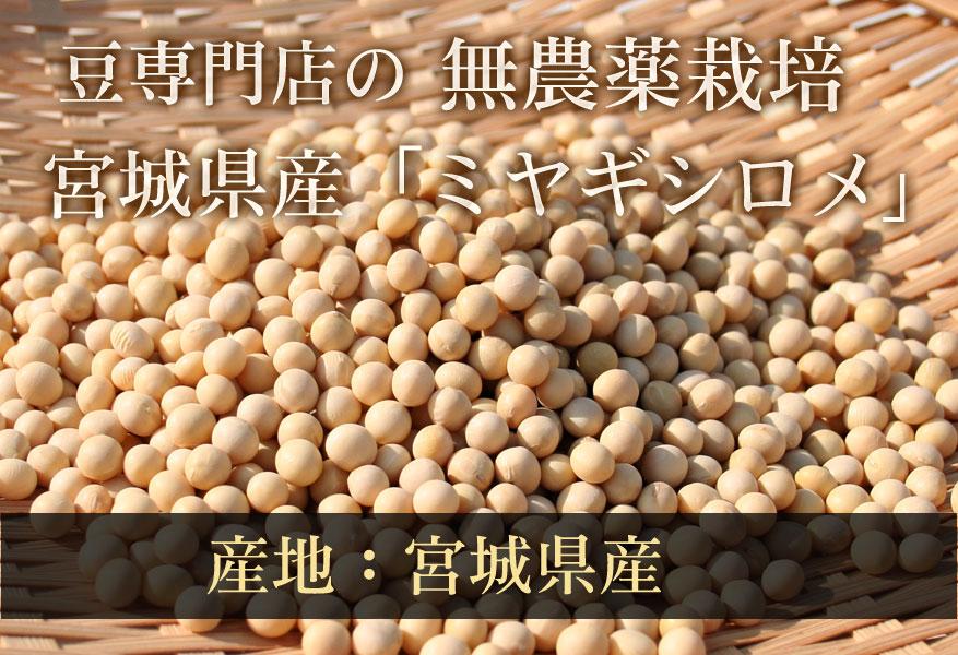 豆専門店の特別栽培大豆 ミヤギシロメ