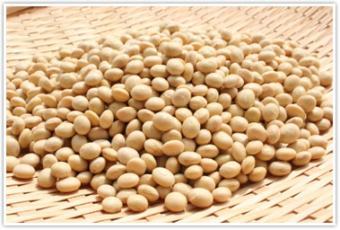 山形県産の地大豆 くるみ豆