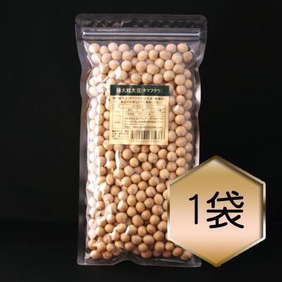 【乾燥豆】極大粒大豆「タマフクラ」(H30・北海道産)
