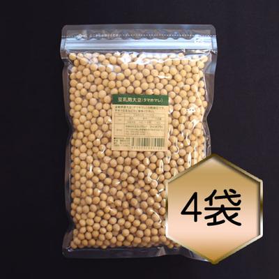 【乾燥豆】豆乳用大豆「タマホマレ」お得セット(H30・島根県産)