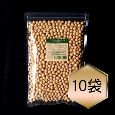 【乾燥豆】イソフラボン高含有大豆「ゆきぴりか」まとめ買いセット(R1・北海道産)