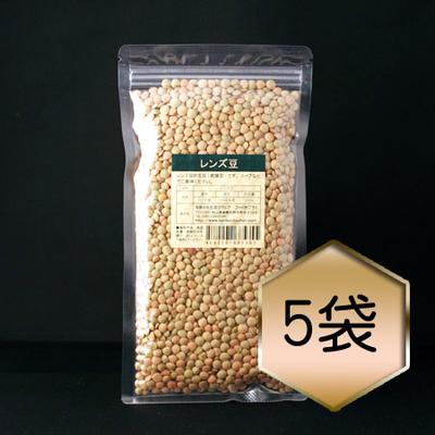 【乾燥豆】茶レンズ豆お得セット(2018年・アメリカ産)