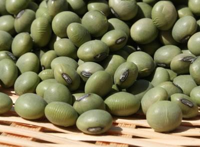青大豆の生豆