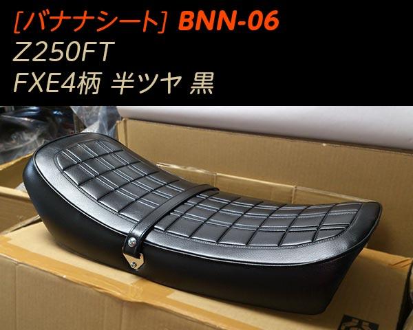 BNN-06