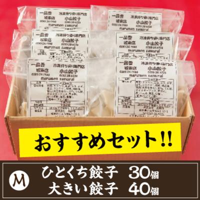 【M】ひとくち餃子30個.大きい餃子40個のセット