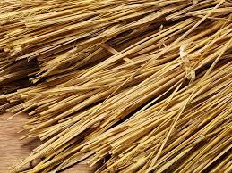 自然栽培稲わら2kg
