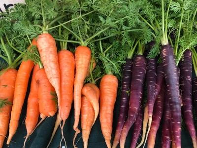 【準備中】結の手の自然栽培野菜