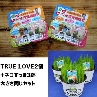ペット用健康野菜ネコすっきTRUE LOVE2パック&ネコすっき3個大きさ同じセット