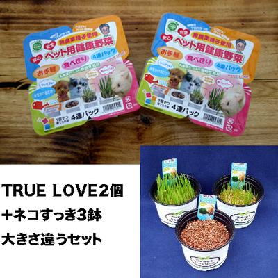 ペット用健康野菜ネコすっきTRUE LOVE2パック&ネコすっき3個大きさ違いセット
