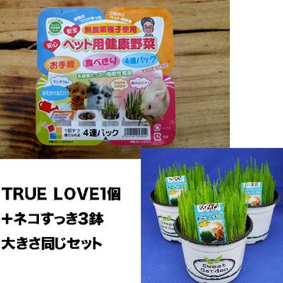 ペット用健康野菜ネコすっきTRUE LOVE1パック&ネコすっき3個大きさ同じセット