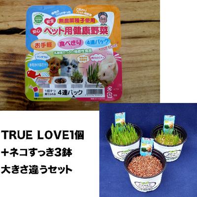 ペット用健康野菜ネコすっきTRUE LOVE1パック&ネコすっき3個大きさ違いセット