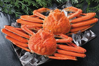 特大ずわい蟹姿2尾(2k)セット