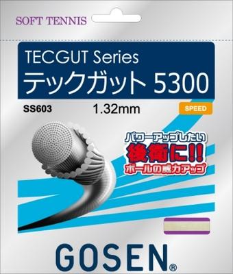 【ゴーセン】TECGUT 5300(テックガット5300)