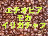エチオピア モカ イリガチャフェ Washed 100g詰/袋