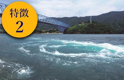 長島海峡育ち