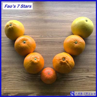 Fao's 7 Stars 〜ふぁおの柑橘7種〜