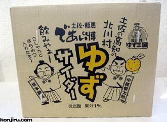 北川村ゆず王国 ゆずサイダー 250ml×30本入