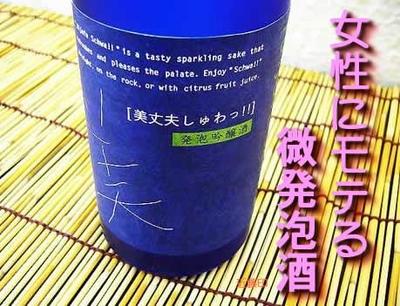 浜川商店(濱乃鶴酒造) 美丈夫しゅわ【クール便】