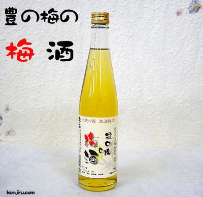 高木酒造 豊の梅の梅酒 12度 500ml