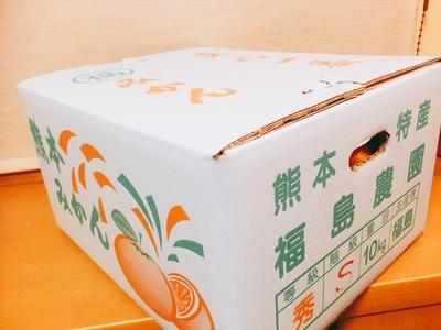 熊本みかん極み(Sサイズ)10キロ【完売御礼】