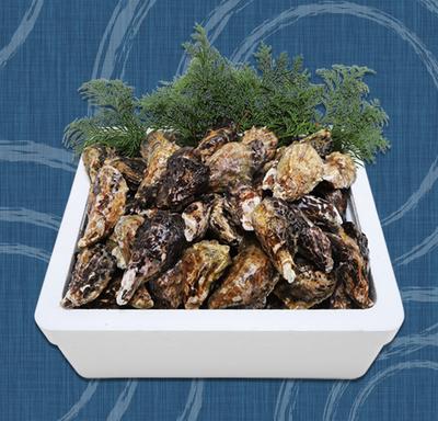 殻付き牡蠣(加熱用) 10キロ(140~150個)(軍手、ナイフ付)