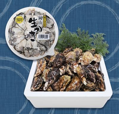 円盤(むき身500g)と殻付き牡蠣(3kg加熱用)のセット(軍手、ナイフ付)