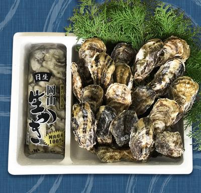 大袋(800g水入り)と殻付き牡蠣(2kg加熱用)のセット(軍手、ナイフ付)