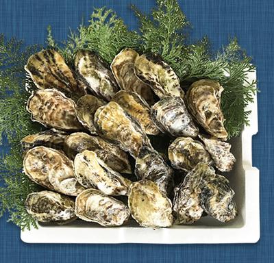 殻付き牡蠣(加熱用) 6.5キロ(約100個〜110個)(軍手、ナイフ付)