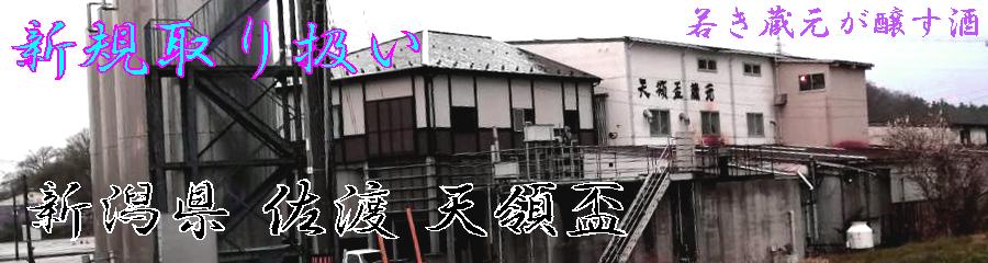 新規取り扱い 新潟県 佐渡 天領盃