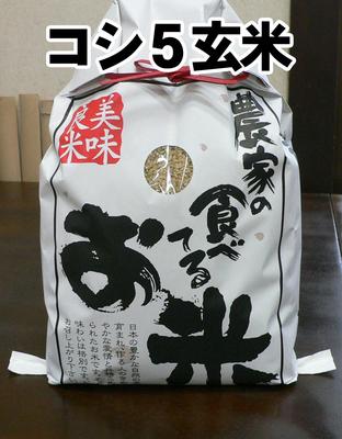 特栽コシヒカリ-玄米5キロ(2018年産)