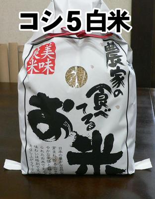 特栽コシヒカリ-玄米5キロ精米(2018年産)