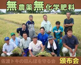 【頒布会】トキの田んぼを守る会 無農薬無化学肥料コシヒカリ(白米) 1年間