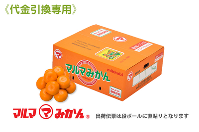【特選】樹熟採取みかん(品種:青島)2Lサイズ5kg