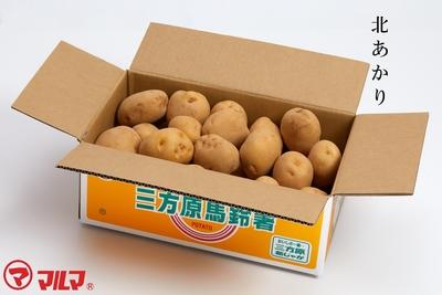 三方原馬鈴薯(北あかり)2LまたはLサイズ5kg