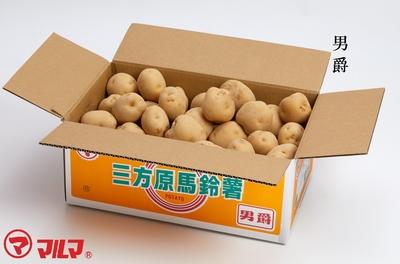三方原馬鈴薯(男爵)2LまたはLサイズ10kg