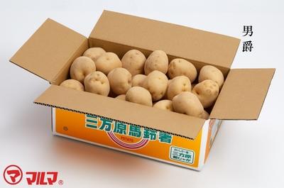 三方原馬鈴薯(男爵)2LまたはLサイズ5kg