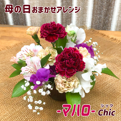 【アレンジメント】「母の日(マハロ)」カーネーション・ガーベラ・スイートピーなど