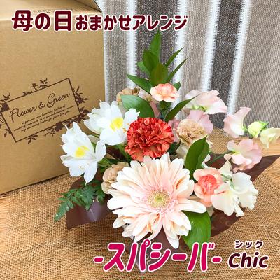 【アレンジメント】「母の日(スパシーバ)」カーネーション・ガーベラ・ミニバラ・スイートピーなど