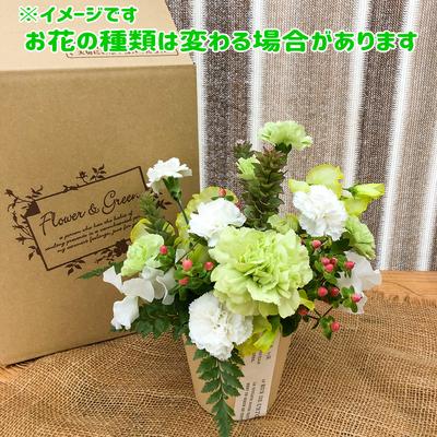 【小さな贈り物】5月のアレンジメント♪季節のお花を使ったフラワーアレンジ☆5月の色はグリーン!お花の種類はお任せ★送料込み