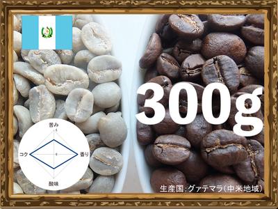 オーガニック グァテマラ300g