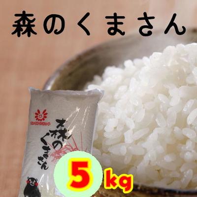 令和1年収穫米 ★森のくまさん 5kg★