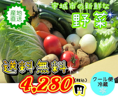 ★野菜の詰合せセット★ 13品~15品