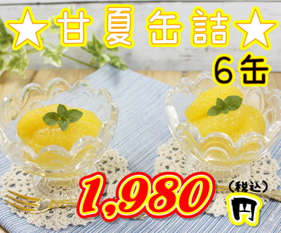 ★熊本三角特産 甘夏みかん 6缶入り★