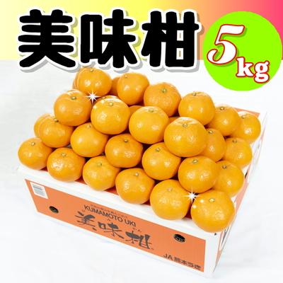 ★美味柑5kg(赤秀S)★  10月中旬より販売開始