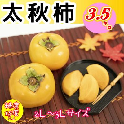 ★太秋柿3.5㎏(10~12玉)販売終了