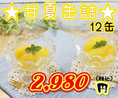 ★熊本三角特産 甘夏みかん 12缶入り★