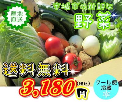 ★野菜の詰合せセット★ 7品~10品