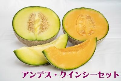 【予約販売】アンデス・クインシーセット